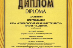 Диплом 2 место_ЭкспоСибирь_22.02.2019_за Модель
