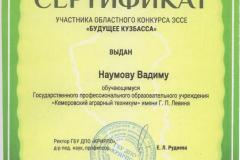Наумов В._сертификат _Будущее кузбасса-min