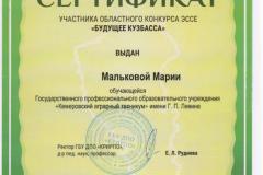 Сертификат 1 - 0004