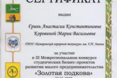 Гринь А., Коровина М._Серт ДОиН _23.01.2020