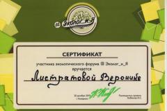 Сертификат 2 - 0006