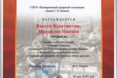Михайлов Н., Валуев К._Лауреаты_Строки Победы_08.05.2020