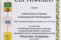 Седова А., Глушакова Я_Серт ДОиН _23.01.2020