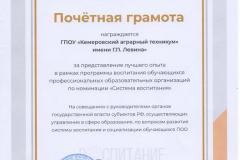 Почетная грамота за лучший опыт_Казань _ИРПО_2020