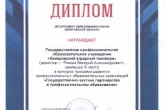 Государственно-частное партнерство в ПО 2017