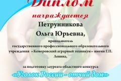 Уголок России - отчий дом 2016г.