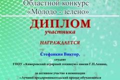 Молодо-зелено_Диплом участника _Стефанкин В.